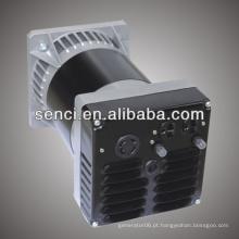 240v 3kw Alternator