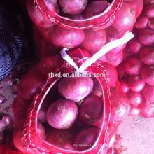 Новый урожай красный свежий лук из Китая
