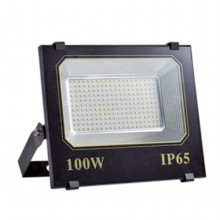 RGB Waterproof 100W LED Flood Light