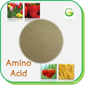Fertilizantes orgânicos Aminoácidos em pó