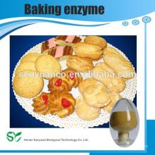 Soda Ash / soda et bicarbonate de sodium / bicarbonate de sodium provenant du fournisseur chinois