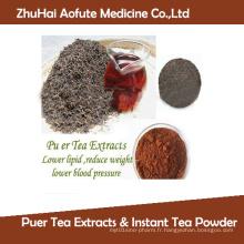 Herbal Health Tea Drink Extraters de thé Puer & Poudre de thé instantanée