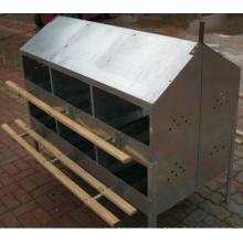 Caja nido para huevos con 24 agujeros para pollos