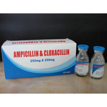 Fast Delivery for β-lactam Antibiotics,Macrolide Antibiotics,Aminoglycoside Antibiotics,Quinolone Antimicrobial Supplier Ampicillin and Cloxacillin for Injection supply to Monaco Manufacturer