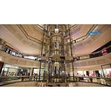 Exterior Glass Glassline Elevador de turismo Gearless de acero inoxidable