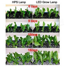LED Growing Lights for Indoor Breeding&Seedlings