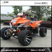 250cc EEC Sports ATV Populaire avec approbation CEE Pneu de haute qualité de 12 pouces