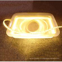 Хорошее качество ac110v/220 В 100 м светодиодные полосы Водонепроницаемый