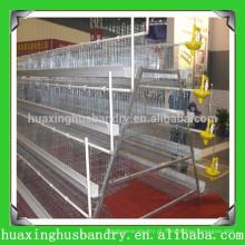 China popular e de boa qualidade aves de galinha criando casas
