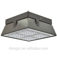 30W 60W LED Canopy Light