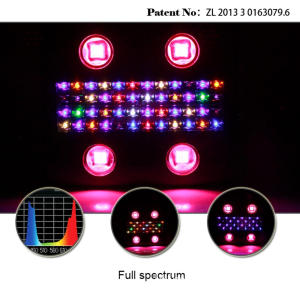 12 Bands Spectrum LED tumbuh ringan