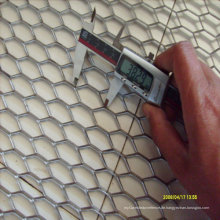 Galvanisierter Stahl-Verlängerungs-Drahtgewebe