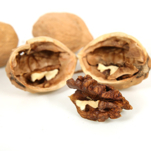 Superior Grade Walnuts with Shell