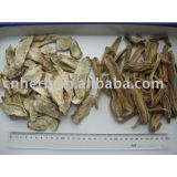 inulin root tea purpose
