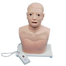 Monitor eletrônico de uso clínico Modelo de equipamento de exame de laringe Pharynx