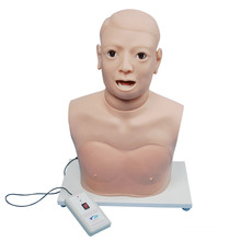Электронный монитор клинического использования Модель оборудования для обследования гортани
