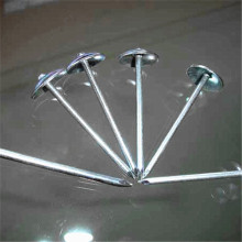 Galvanized Smooth Shank Roofingumbrella Nail