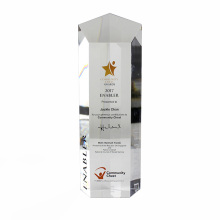 Bloco de troféus de acrílico transparente APEX para presentes personalizados