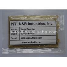 Natural Kelp Powder from Dried Kelp Seaweed