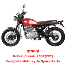 QINGQI Classic 250Z EFI Complete Motorcycle Spare Parts