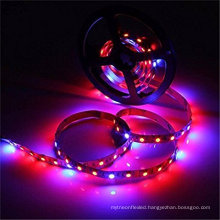 LED Strip Light Plant Grow Lights 16.4ft 5050 SMD Waterproof Full Spectrum Red Blue 4:1 Growing Lamp for Aquarium Greenhouse
