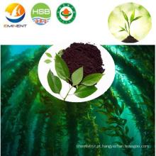 Fertilizante microbiano de algas com NPK elevado extraído de plantas