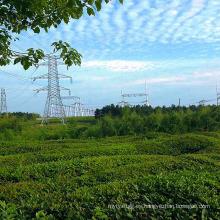 Terminal de esquina de 220 kV Ángulo de transmisión de potencia Torre de acero