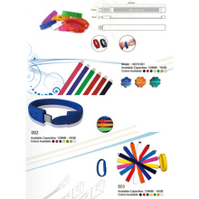 Pulsera USB Drive (18D72001)