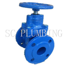 OS&Y Flanged Ends F4/F5/BS5163 Resilient Seated Gate Valves