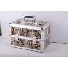 Berufskasten-Art Aluminiumwerkzeug-Kasten, EVA-Aufbewahrungskoffer
