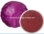 Red Cabbage Pigment/Organic Pigment Red Powder