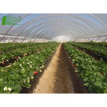 Полиэтиленовая пленка теплиц УФ защита сельскохозяйственной пленки биодеградация биодеградация