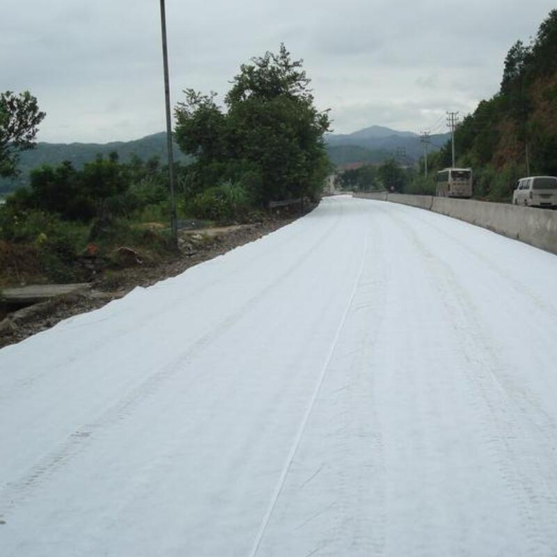 geotextile for road