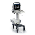Animal Veterinary Ultrasound Color Doppler Laptop Veterinary Doppler