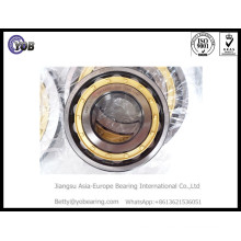 Nu 2228 Ecm / C3 Cylindrical Roller Bearing with Brass Cage