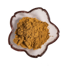 factory supply hot selling purre natural witch hazel extract powder 10:1