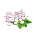 Chinese  stevia mints candy mentos candy mints peppermint candy