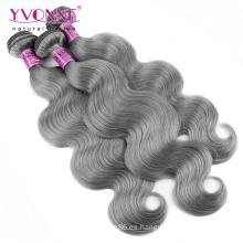 Venta al por mayor brasileña Body Wave Grey Hair Armadura