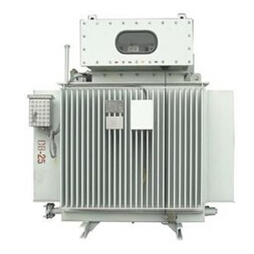 Petrochemical Power Transformer
