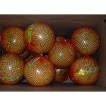 Nova colheita Fresh Honey Pomelo EU Quality