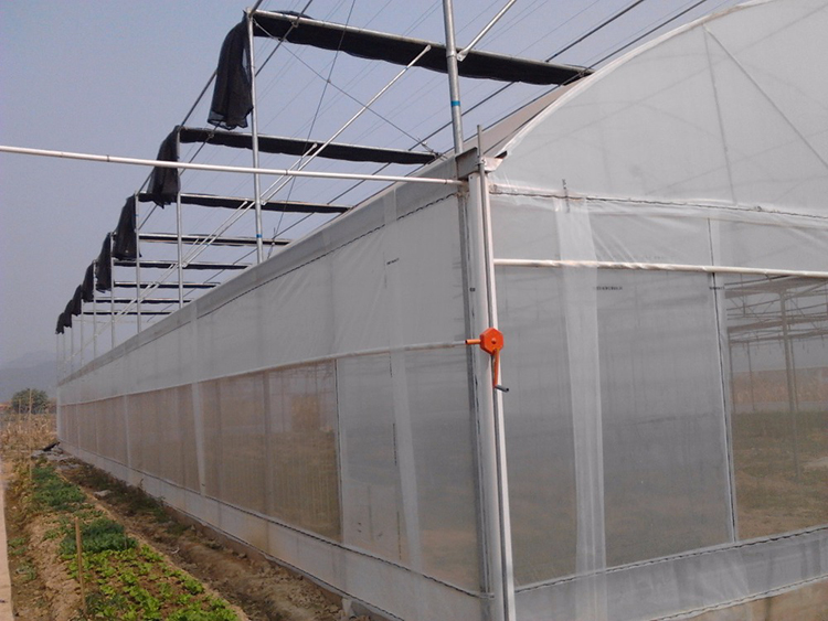 Lamulti Span Pe Film Greenhouse Ventilation