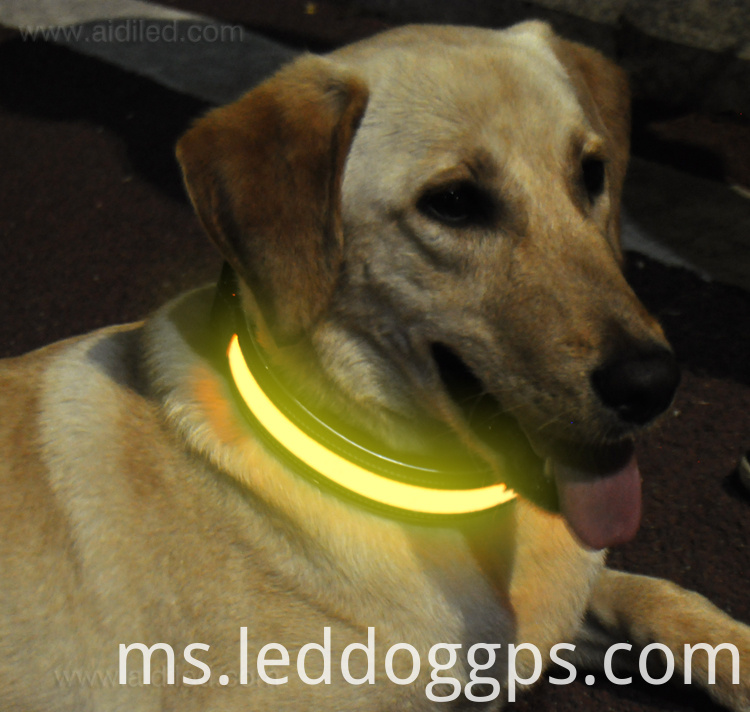 New Design Led Dog Collar