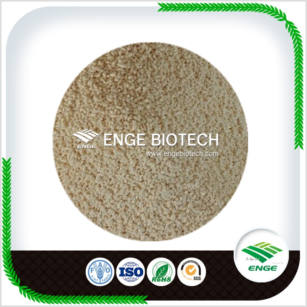 High Quality Fungicide Hexaconazole 50% WDG Powder