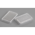 TC-Treated 96 well V-bottom cell culture plate
