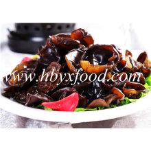 2-2.5cm boa qualidade secas fungo preto madeira orelha