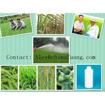 Produtos Químicos Agrícolas Herbicida Controlo de Ervas daninhas 93% Tc Nº CAS: 122836-35-5 Sulfentrazone
