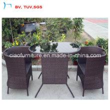 Table de salle à manger de rotin de jardin de meubles de patio avec le verre (CF1245)
