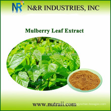 Mulberry Powder and Mulberry Juice Powder from Mulberry Leaf