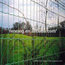 Anping Easy install High quality galvanized /PVC coating Park Euro fence