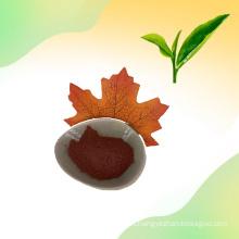 Natural 98% Tea polyphenol Green Tea Extract Powder